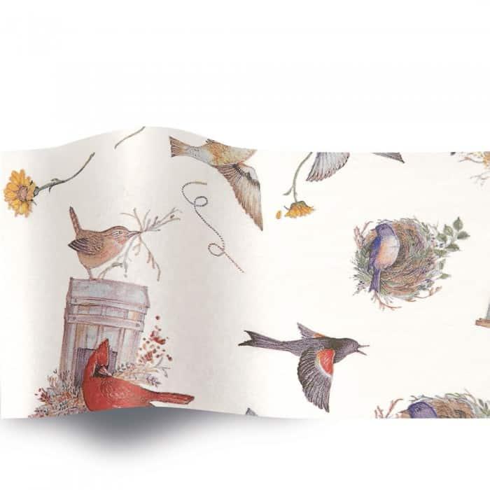 Birds' Nests 107 (A)