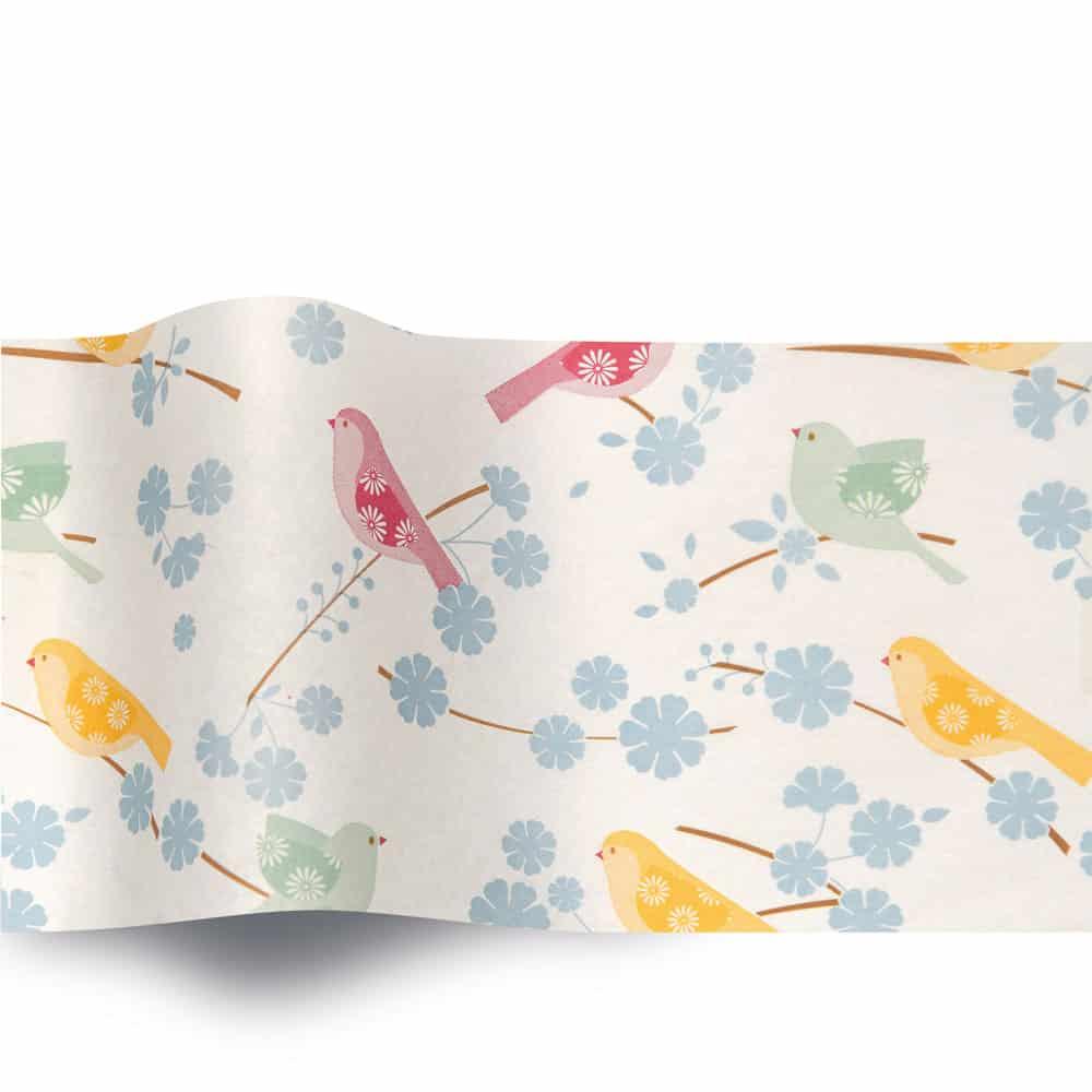 Song Birds 320 (B)